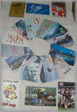 Skitelecard