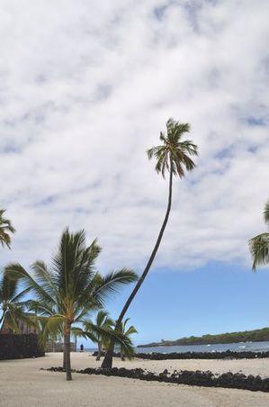 2010_hawaii_068