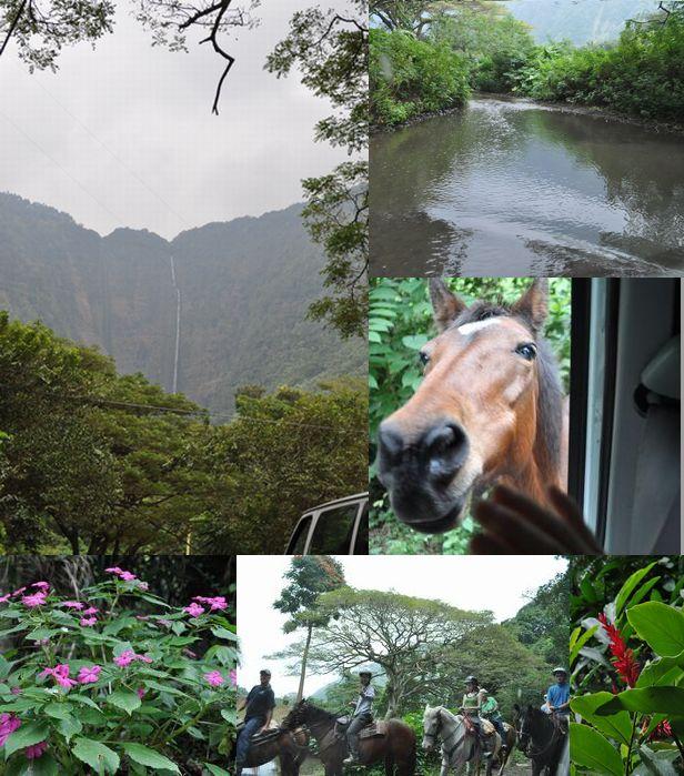 2010_hawaii_188_2