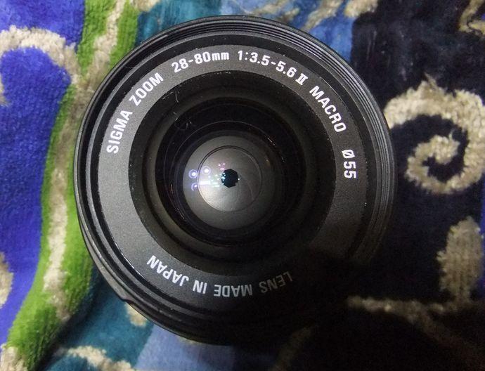 Dscf2877